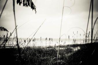 CHS Beach Walk 02