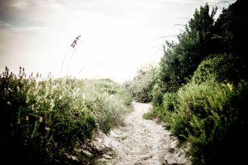 CHS Beach Walk 06
