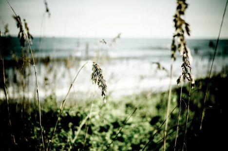 CHS Beach Walk 08